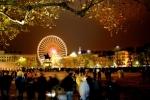Lumières sur les fleuves - Lyon (69)