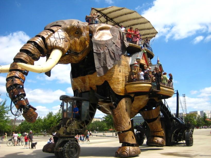 A dos d'éléphant - Nantes (44)