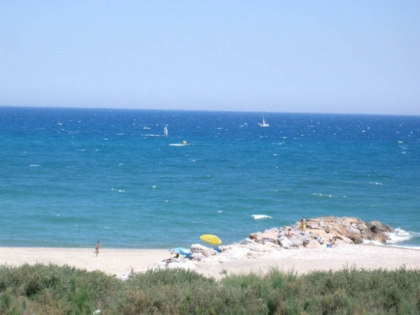 Printemps méditerranéen - Saint-Cyprien (66)